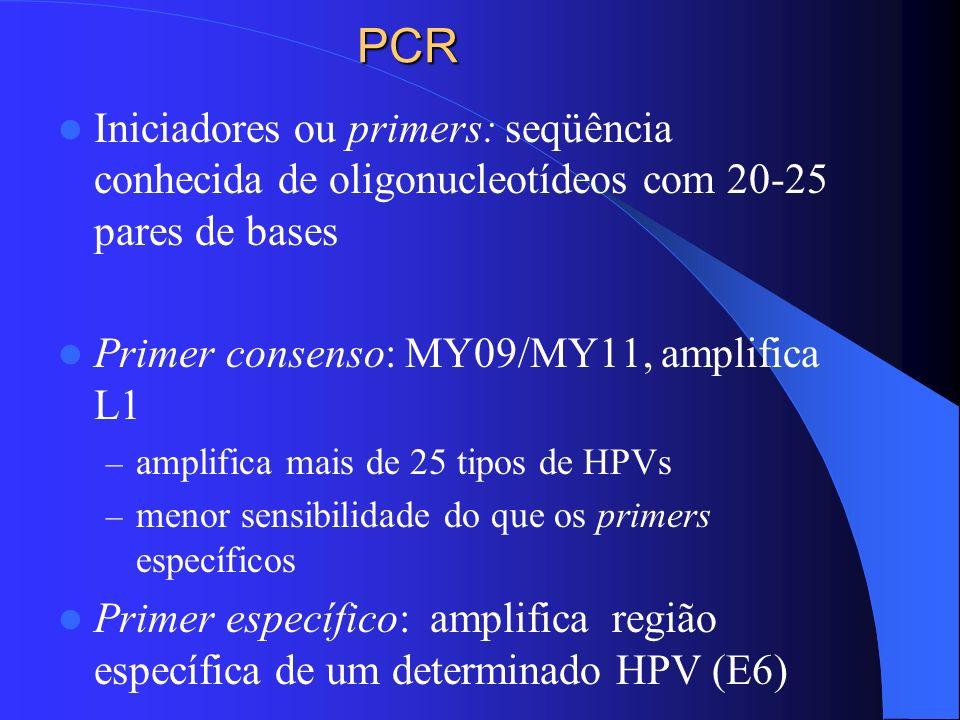 PCR Iniciadores ou primers: seqüência conhecida de oligonucleotídeos com 20-25 pares de bases. Primer consenso: MY09/MY11, amplifica L1.
