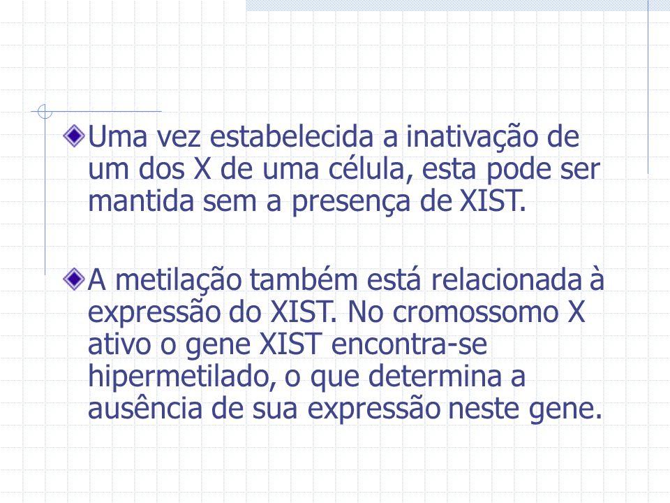 Uma vez estabelecida a inativação de um dos X de uma célula, esta pode ser mantida sem a presença de XIST.