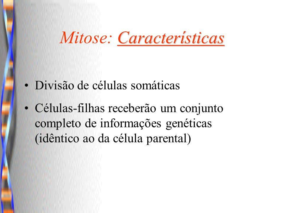 Mitose: Características