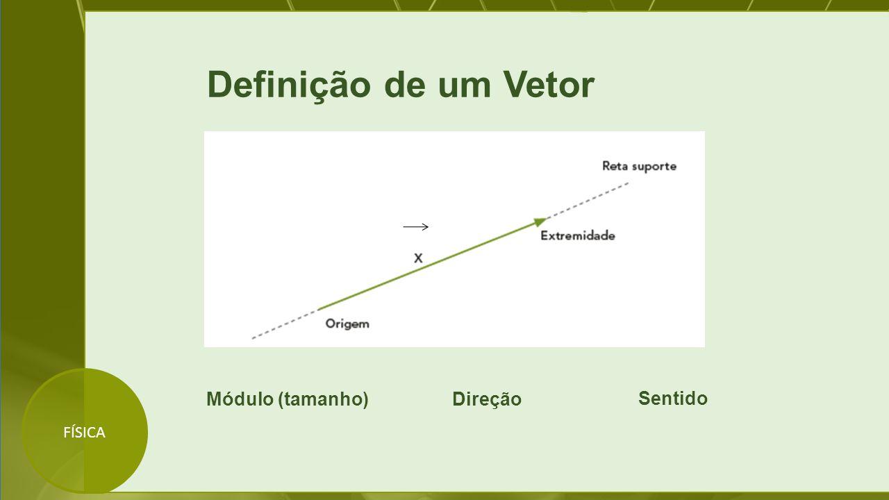 Definição de um Vetor Módulo (tamanho) Direção Sentido FÍSICA