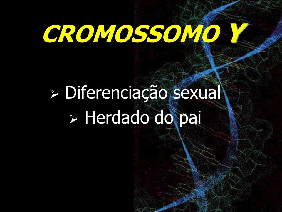 CROMOSSOMO Y Diferenciação sexual Herdado do pai
