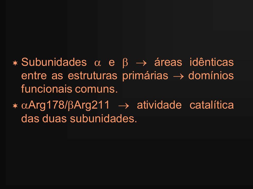 Subunidades  e   áreas idênticas entre as estruturas primárias  domínios funcionais comuns.