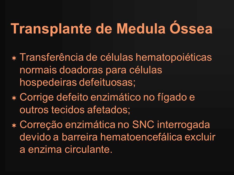 Transplante de Medula Óssea