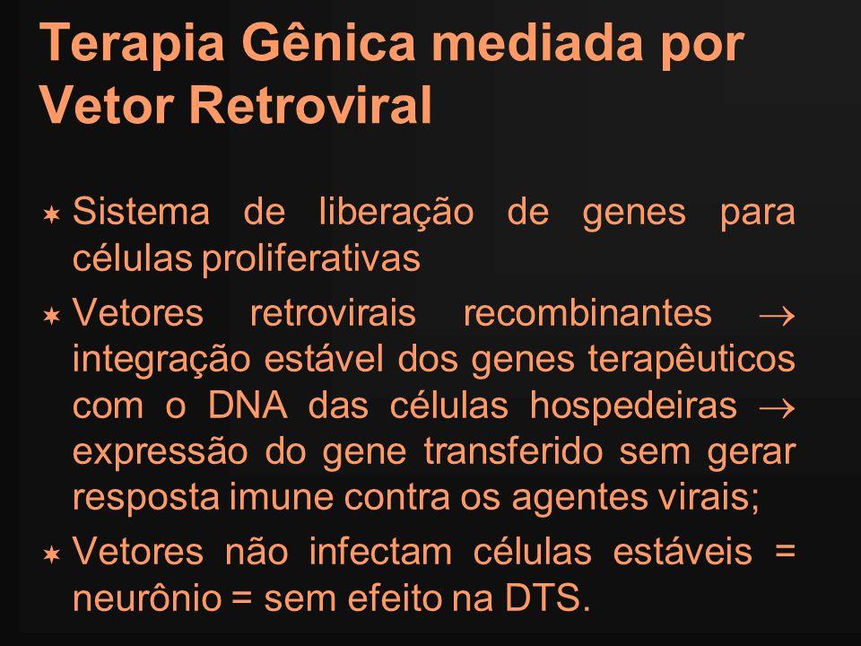 Terapia Gênica mediada por Vetor Retroviral
