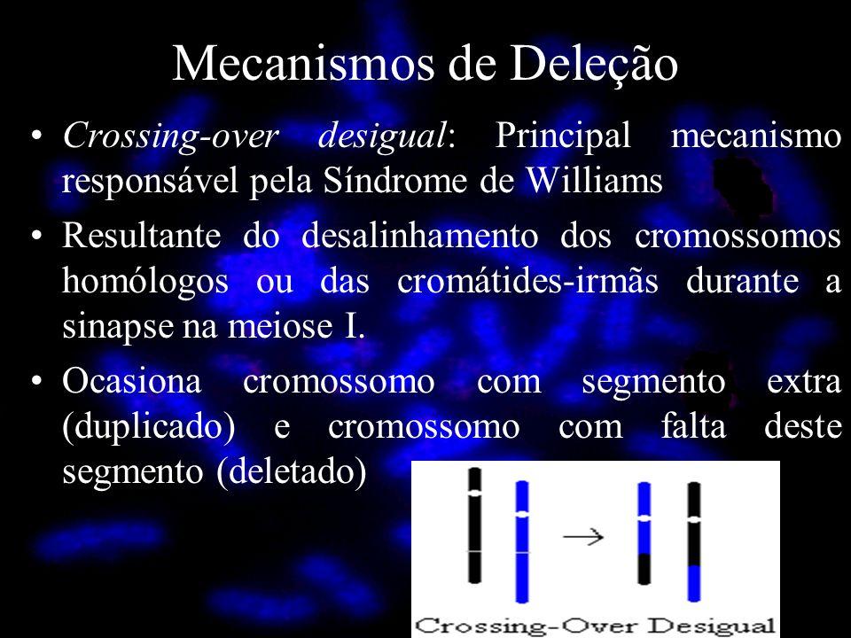 Mecanismos de Deleção Crossing-over desigual: Principal mecanismo responsável pela Síndrome de Williams.