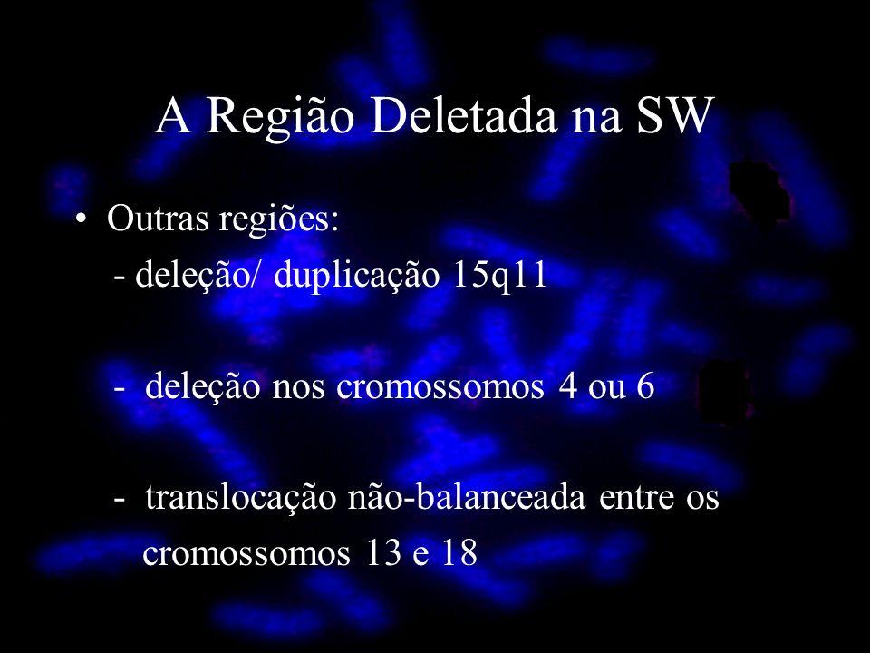 A Região Deletada na SW Outras regiões: - deleção/ duplicação 15q11