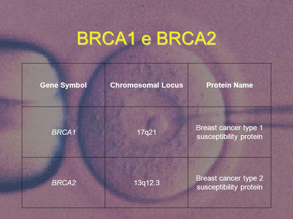 BRCA1 e BRCA2 Gene Symbol Chromosomal Locus Protein Name BRCA1 17q21