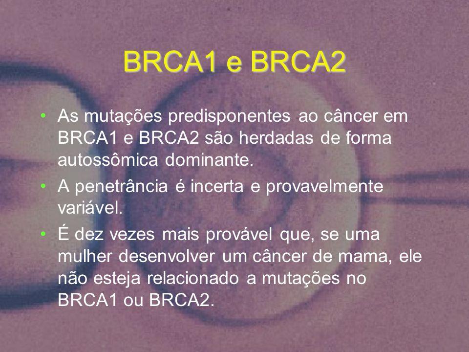 BRCA1 e BRCA2 As mutações predisponentes ao câncer em BRCA1 e BRCA2 são herdadas de forma autossômica dominante.