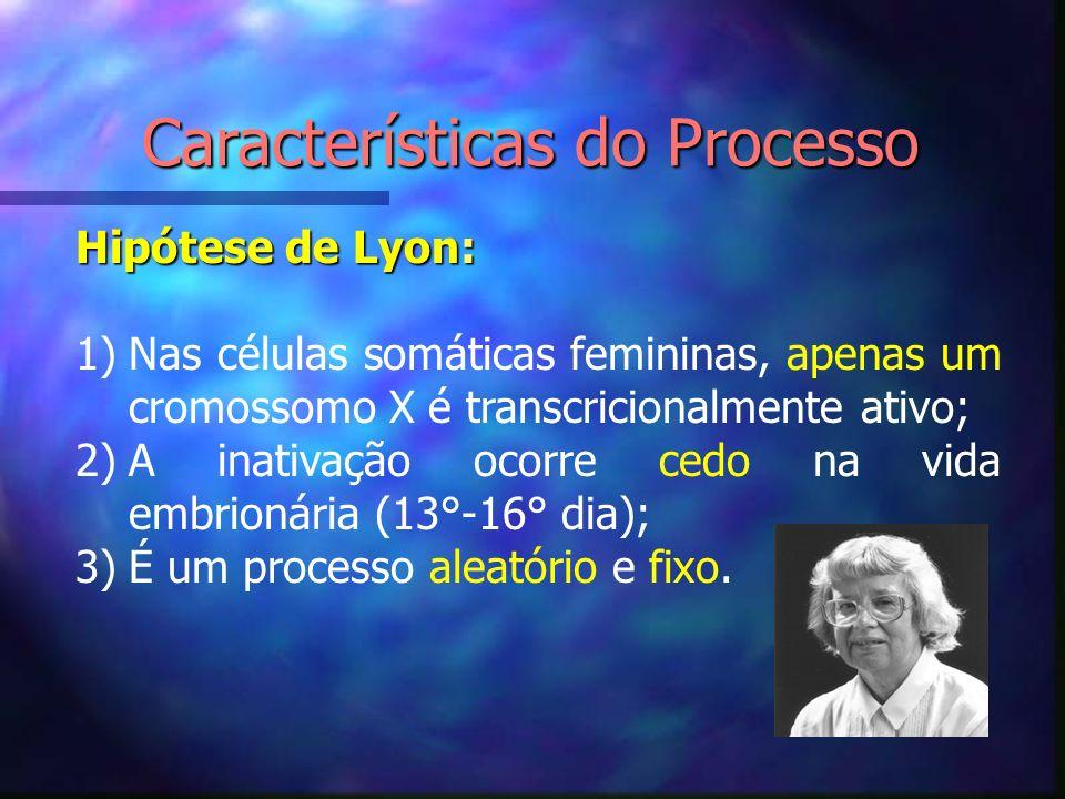 Características do Processo