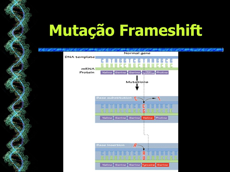 Mutação Frameshift