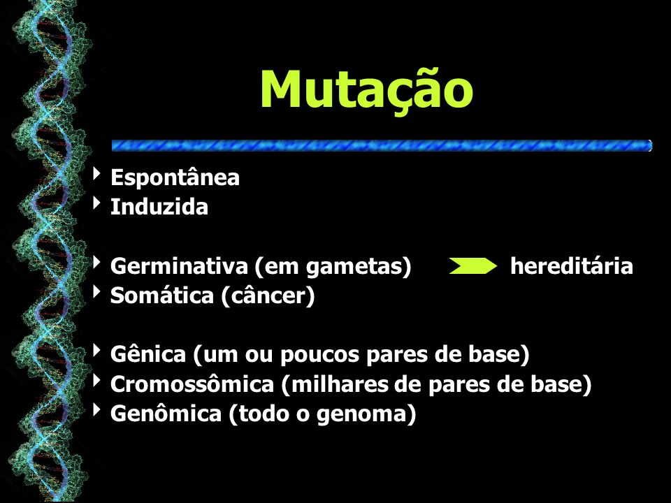 Mutação Espontânea Induzida Germinativa (em gametas) hereditária