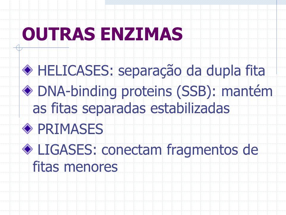 OUTRAS ENZIMAS HELICASES: separação da dupla fita