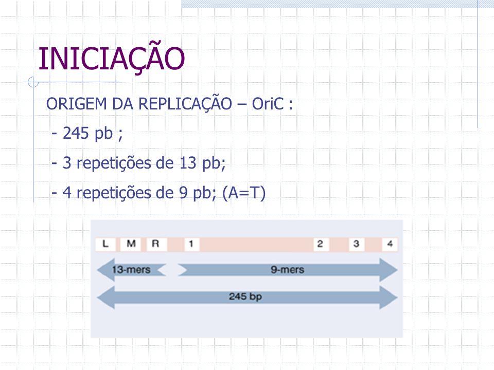 INICIAÇÃO ORIGEM DA REPLICAÇÃO – OriC : - 245 pb ;