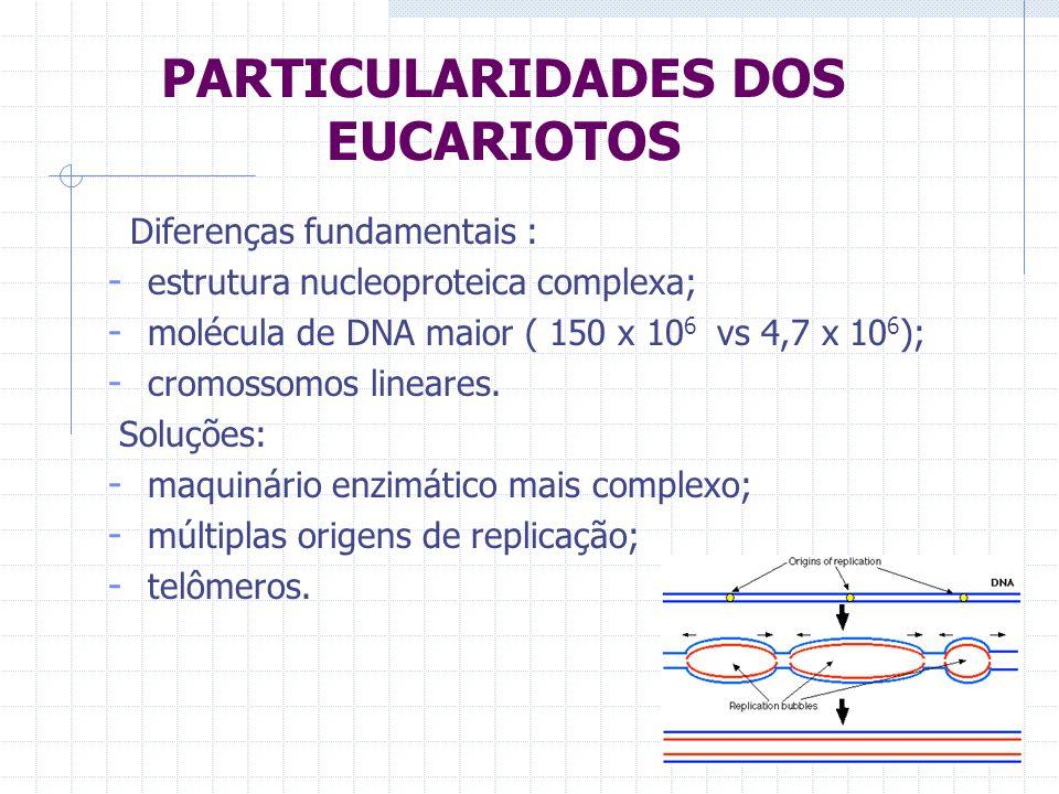 PARTICULARIDADES DOS EUCARIOTOS