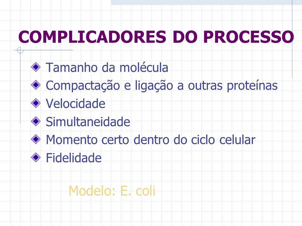 COMPLICADORES DO PROCESSO