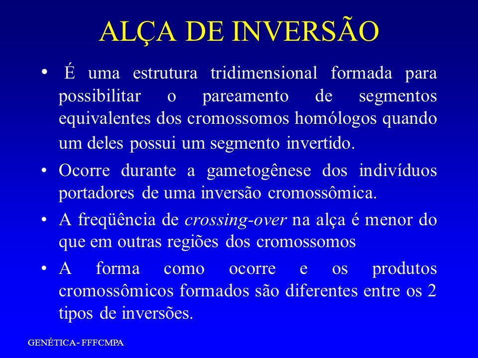 ALÇA DE INVERSÃO