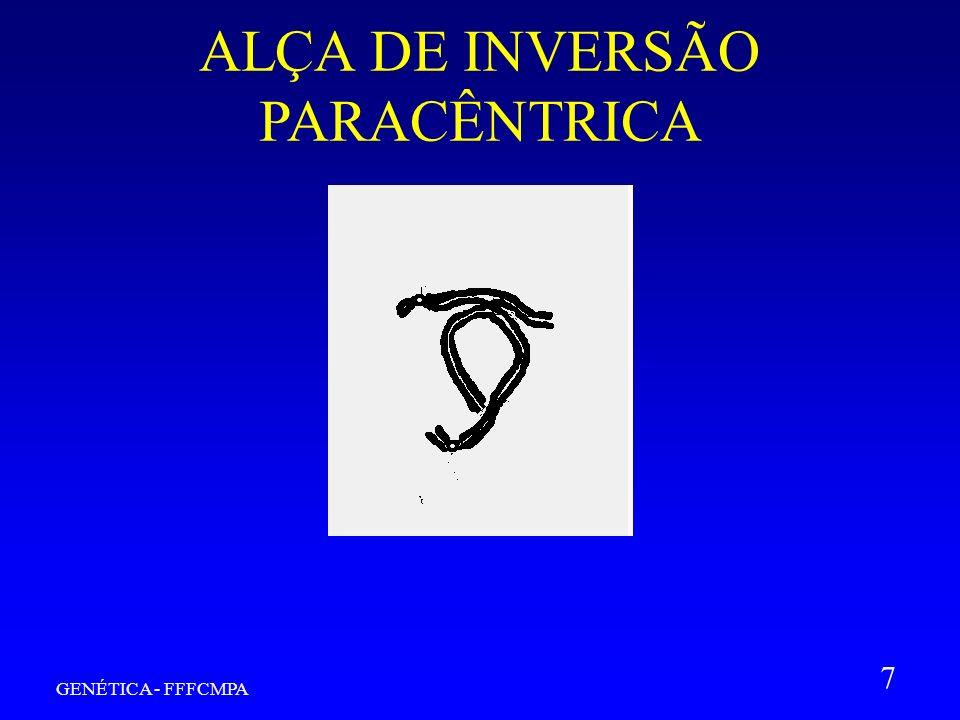 ALÇA DE INVERSÃO PARACÊNTRICA