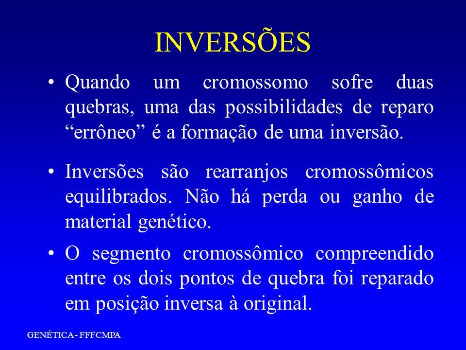 INVERSÕES Quando um cromossomo sofre duas quebras, uma das possibilidades de reparo errôneo é a formação de uma inversão.