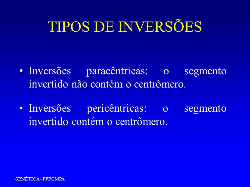TIPOS DE INVERSÕES Inversões paracêntricas: o segmento invertido não contém o centrômero.
