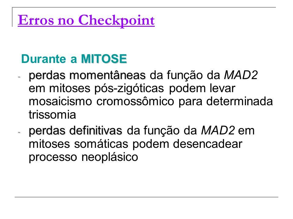 Erros no Checkpoint Durante a MITOSE