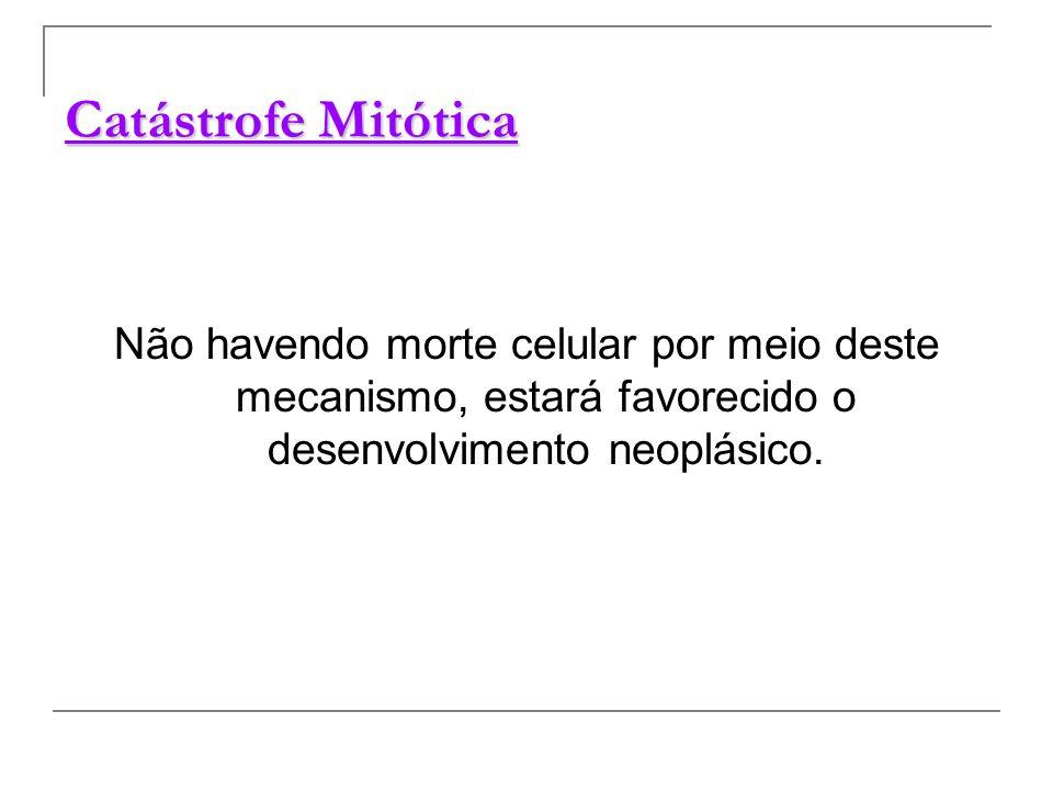 Catástrofe Mitótica Não havendo morte celular por meio deste mecanismo, estará favorecido o desenvolvimento neoplásico.