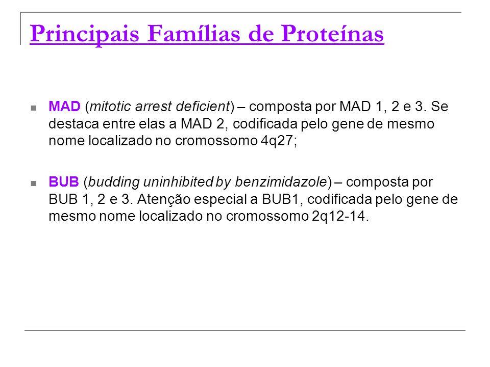 Principais Famílias de Proteínas