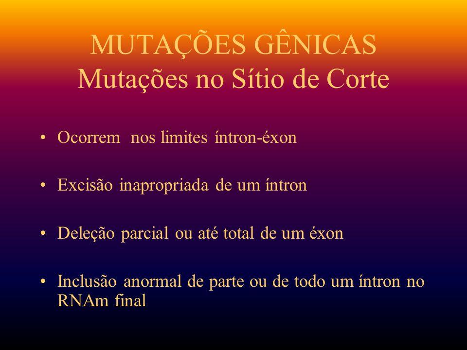 MUTAÇÕES GÊNICAS Mutações no Sítio de Corte