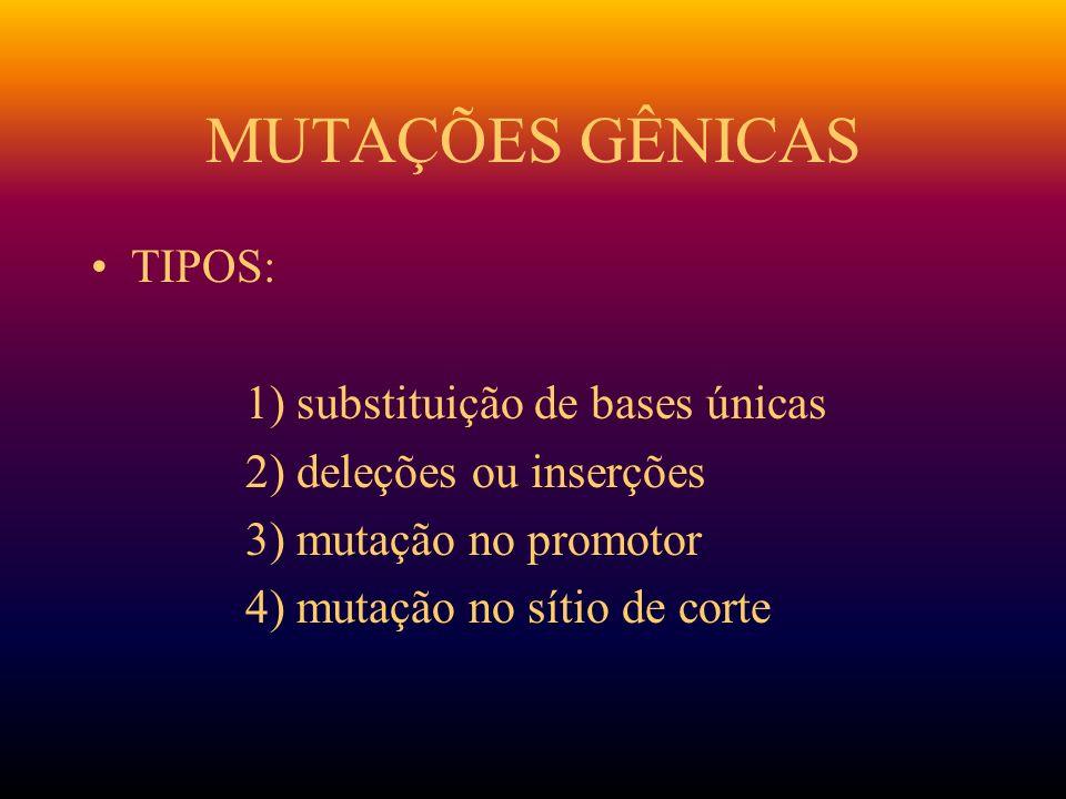 MUTAÇÕES GÊNICAS TIPOS: 1) substituição de bases únicas