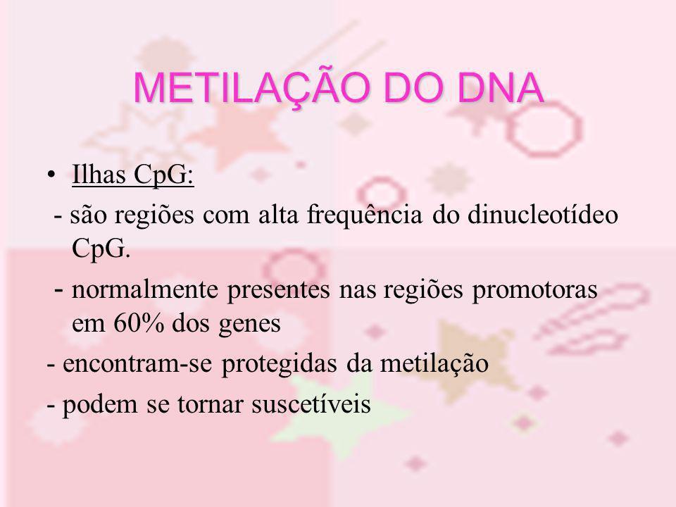 METILAÇÃO DO DNA Ilhas CpG: