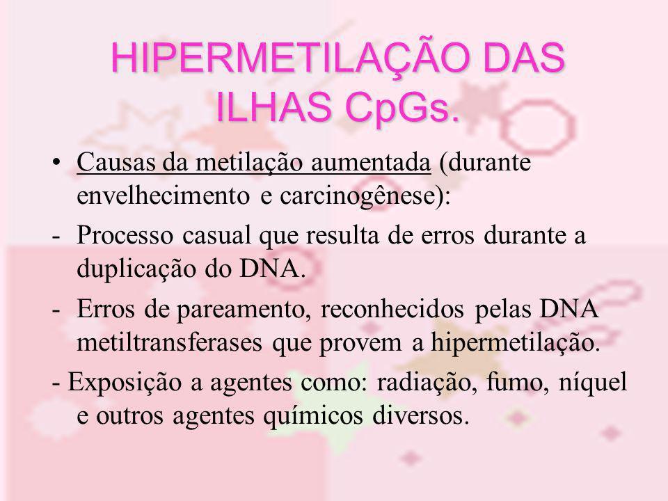 HIPERMETILAÇÃO DAS ILHAS CpGs.