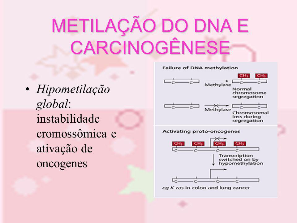 METILAÇÃO DO DNA E CARCINOGÊNESE