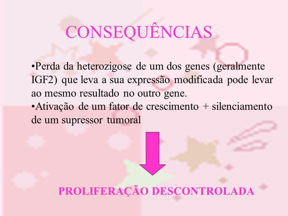 CONSEQUÊNCIAS Perda da heterozigose de um dos genes (geralmente