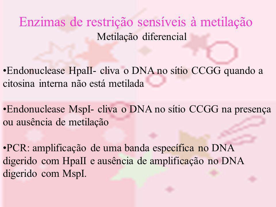 Enzimas de restrição sensíveis à metilação