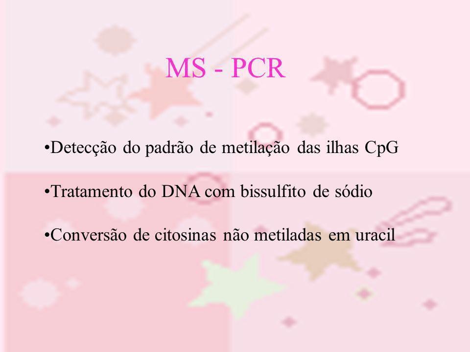 MS - PCR Detecção do padrão de metilação das ilhas CpG