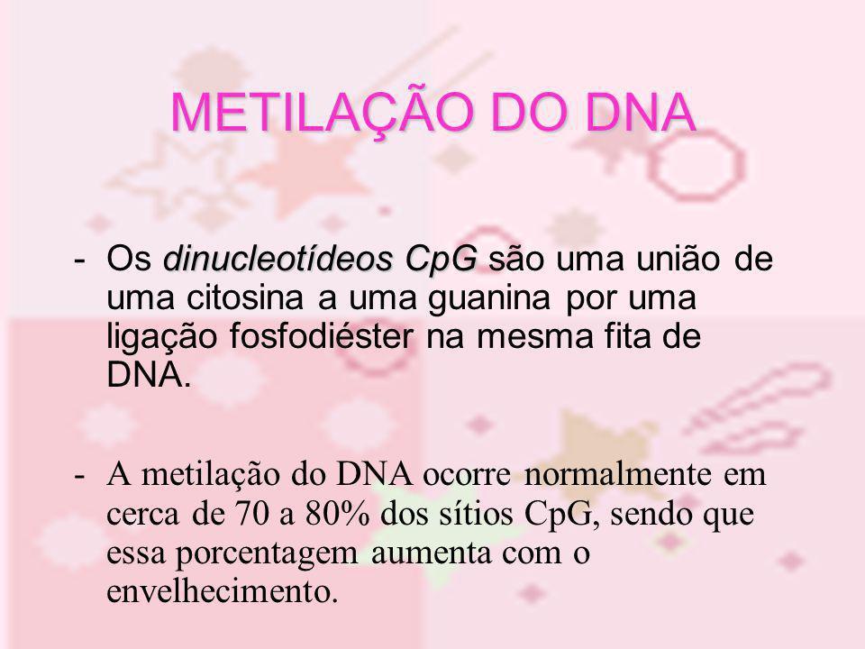 METILAÇÃO DO DNA- Os dinucleotídeos CpG são uma união de uma citosina a uma guanina por uma ligação fosfodiéster na mesma fita de DNA.