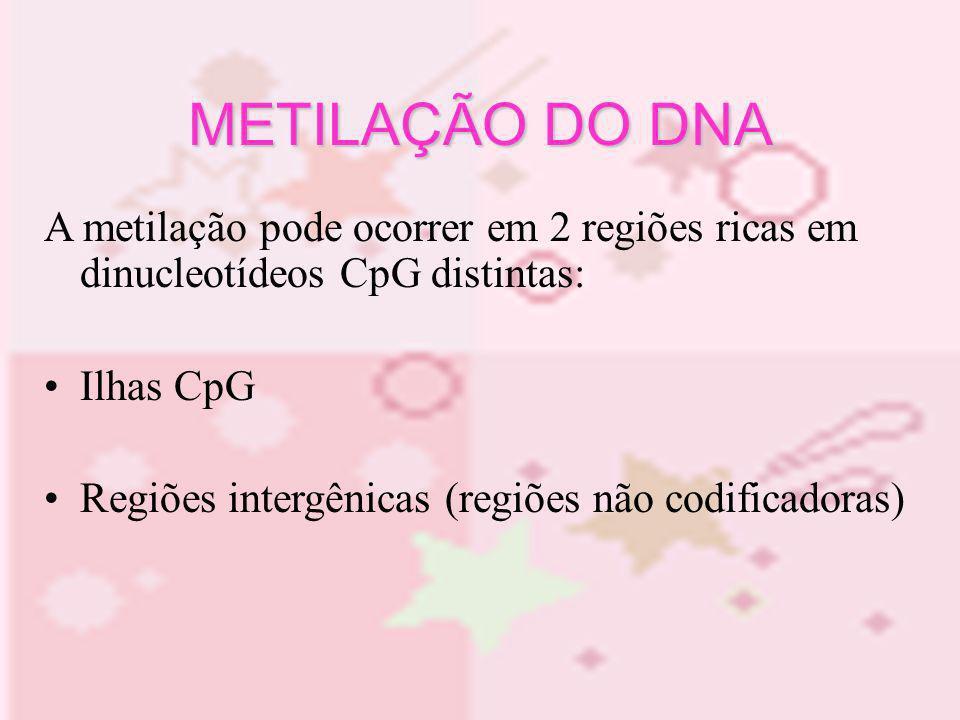 METILAÇÃO DO DNAA metilação pode ocorrer em 2 regiões ricas em dinucleotídeos CpG distintas: Ilhas CpG.