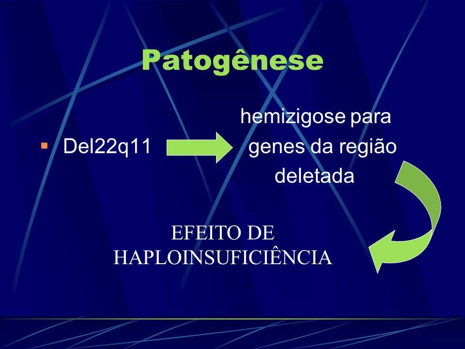 EFEITO DE HAPLOINSUFICIÊNCIA