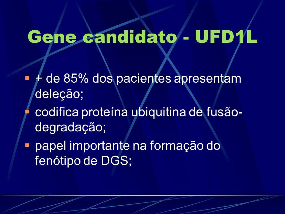 Gene candidato - UFD1L + de 85% dos pacientes apresentam deleção;
