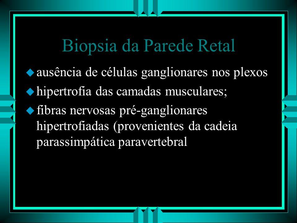 Biopsia da Parede Retal