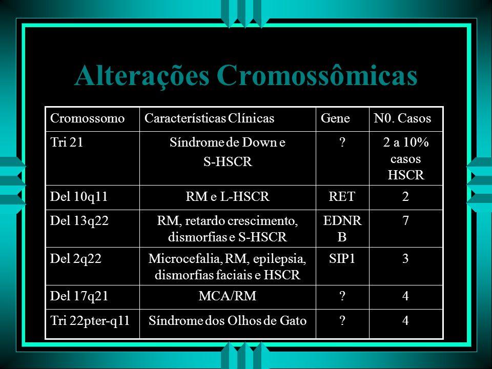 Alterações Cromossômicas