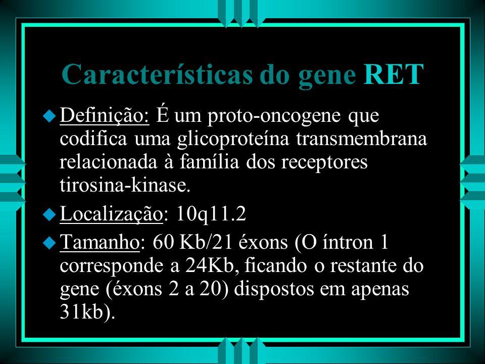 Características do gene RET