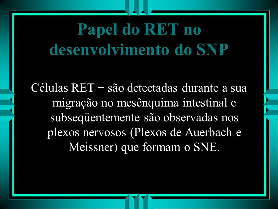 Papel do RET no desenvolvimento do SNP