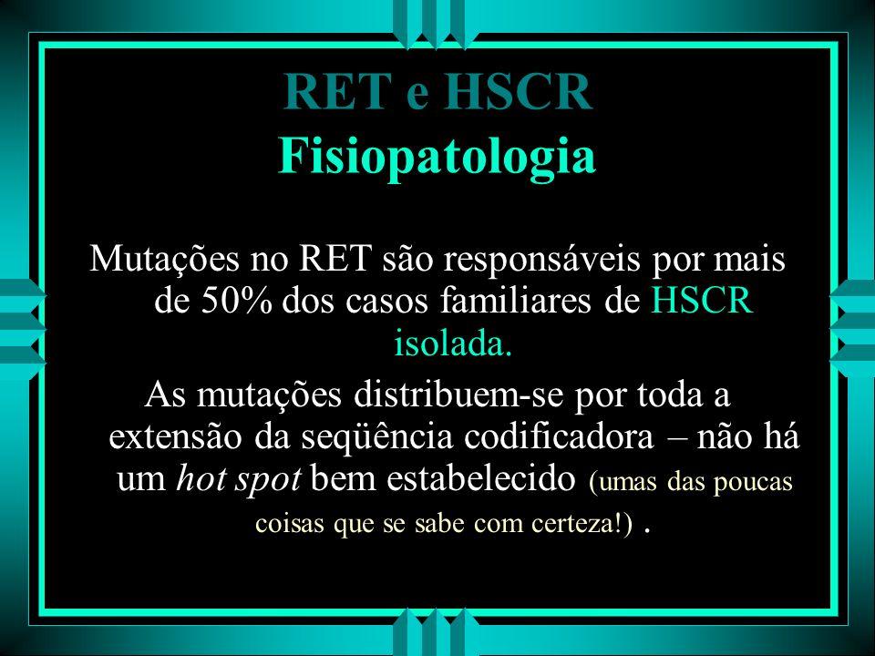 RET e HSCR Fisiopatologia