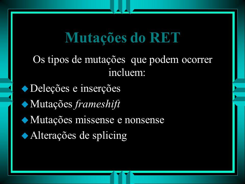 Os tipos de mutações que podem ocorrer incluem: