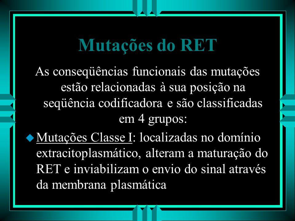 Mutações do RET As conseqüências funcionais das mutações estão relacionadas à sua posição na seqüência codificadora e são classificadas em 4 grupos: