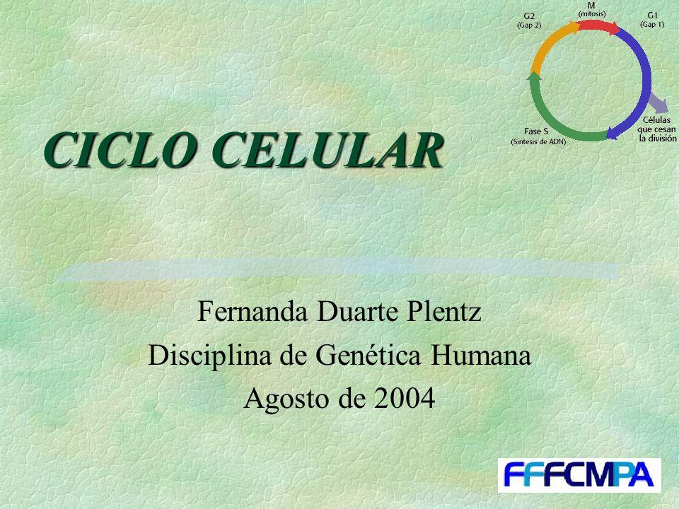 Fernanda Duarte Plentz Disciplina de Genética Humana Agosto de 2004