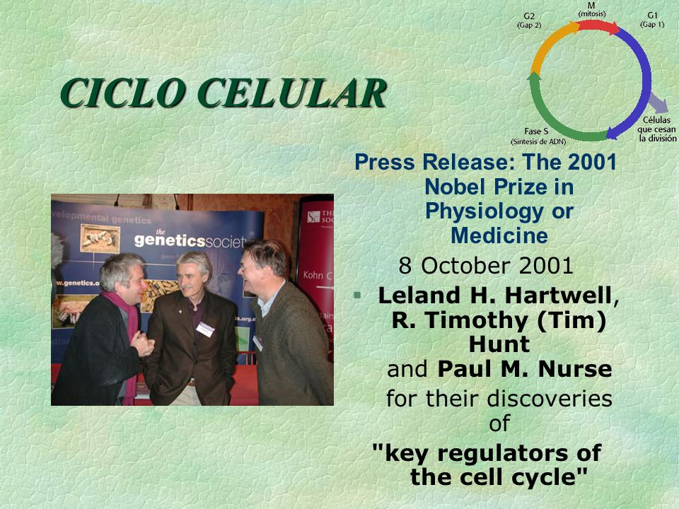 Press Release: The 2001 Nobel Prize in Physiology or Medicine
