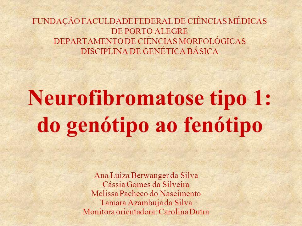 Ana Luiza Berwanger da Silva Cássia Gomes da Silveira