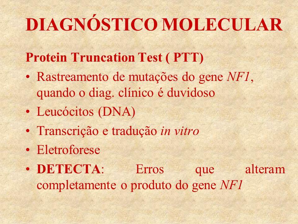 DIAGNÓSTICO MOLECULAR