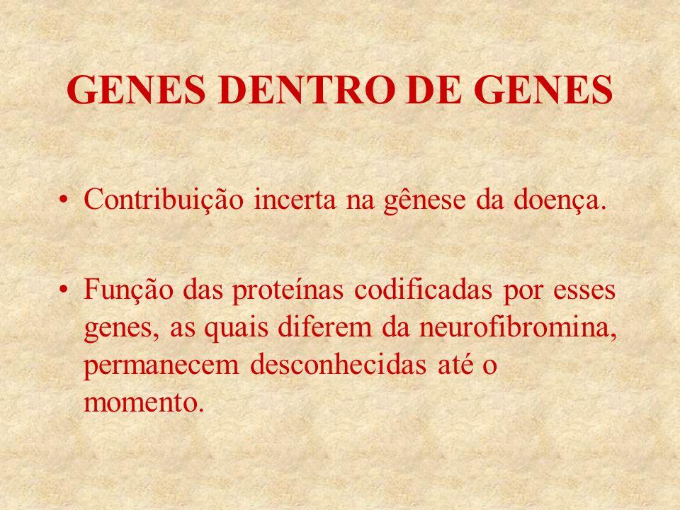 GENES DENTRO DE GENES Contribuição incerta na gênese da doença.